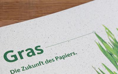 Graspapier – mehr als eine gute Idee
