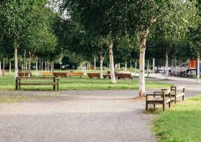 Die Hochschulen in Sachsen-Anhalt
